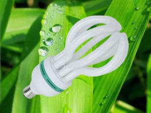 105W Lotus 3000h/6000h/8000h 2700k-7500k E27/B22 220-240V CFL Down Price pictures & photos