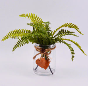 Artificial Herbs Leaves in Glass Bottle with Fake Water pictures & photos