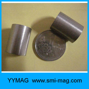 High Quality Rare Earth SmCo Ring Magnets pictures & photos