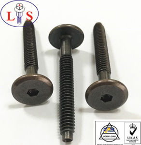 Factory Price 1/4-20 Flat Head Hexagonal Socket Bolt pictures & photos