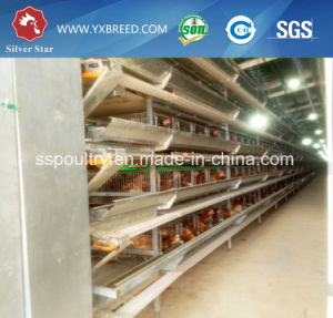 Poultry Raising Equipment Layer Chicken Battery Cage pictures & photos