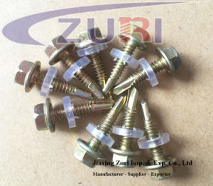 Hexagon Washer/Flange Head Drilling Screws with Plastic Steel Washer pictures & photos
