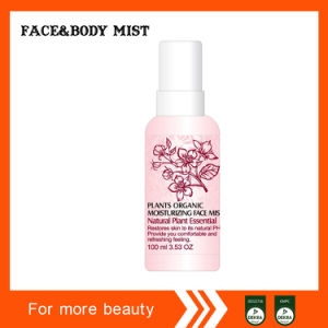 Factory Sell Organic Fruit Body Mist pictures & photos