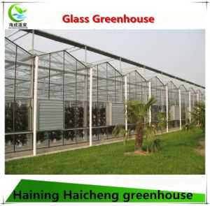Egetable Growing Intelligent Glass Greenhouse pictures & photos