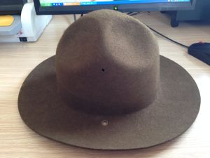 100% Wool Felt Military Fedora Hat in Hotsale pictures & photos