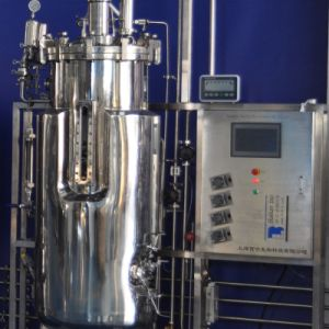 300 Liters Stainless Steel Fermenter (Mechanical stirring) pictures & photos
