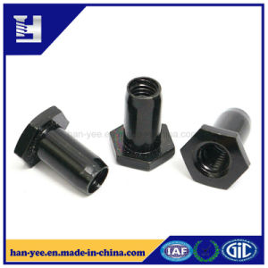Black Zinc Hexagon Head Nut with Chamfer pictures & photos