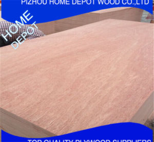 Hardwood Plywood / Bc Grade Plywood for Decoration pictures & photos