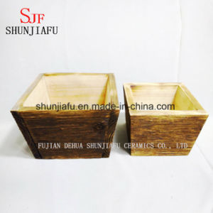 Wood Flowerpot Eco-Friendly Wooden Flower Planter for Succulent Plants pictures & photos