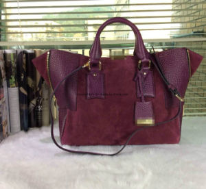 Lady Handbag Leather Bag pictures & photos