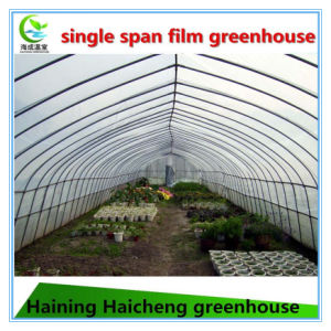 Tunnel Hoop Greenhouse for Agricultural pictures & photos