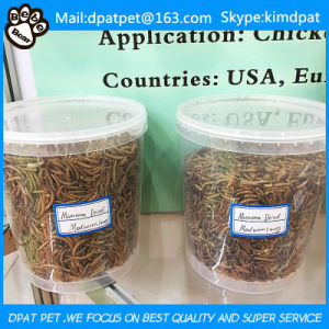 Lower Price Dried Mealworms for Pets pictures & photos