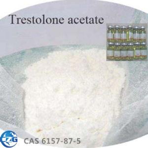 Anabolic Steroid Hormone Powder 6157-87-5 Trestolone Acetate Trestolone pictures & photos