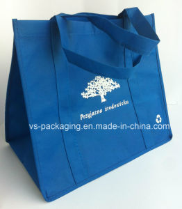 Non Woven Bag in Big Size pictures & photos