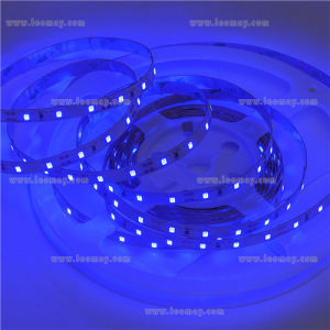 Christmas Light Non-Waterproof RGB LED Strip pictures & photos
