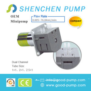 Dual Channel Compact DC Motor Mini Pump pictures & photos