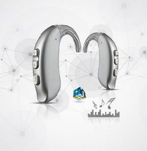 Cheapest China Manufacture Ce & FDA Digital Hearing Aid Bte Ric 6 Channels pictures & photos