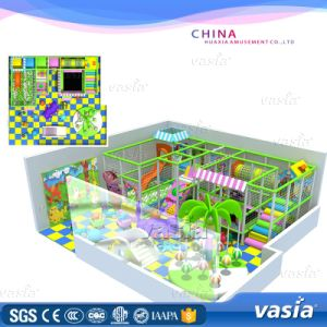 Children Commericial Playground Indoor by Vasia pictures & photos