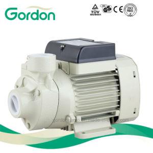 Qb60 Gardon Electric Brass Impeller Peripheral Water Pump pictures & photos
