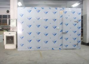 Deep /Blast Freezer for Fish, Meat, Pork, Seafood with Bitzer Compressor pictures & photos