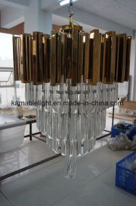 Special Design Chandelier Hotel Pendant Lighting (KAP6040) pictures & photos