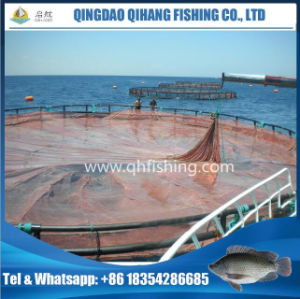 High Capacity Sea Fish Farming Net Cage with HDPE Frame pictures & photos