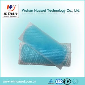 The Best Supplier for Hydrogel Fever Reducing Cooling Ice Plaster with Ce FDA pictures & photos