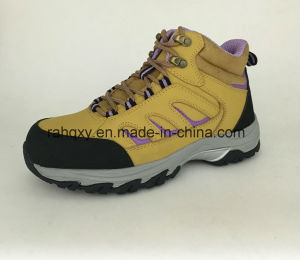Lady Style Cemented Safety Shoes (HQ6120501) pictures & photos