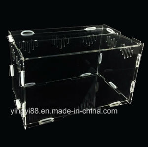Best Selling Acrylic Pet Reptiles Terrarium pictures & photos