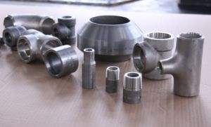 Titanium Full Coupling pictures & photos