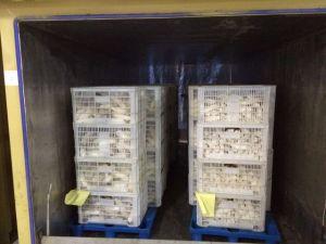 Mushroom Vacuum Cooling System pictures & photos