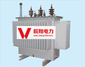 S11-1000kVA Oil Immersed Transformer /Electric Power Transformer pictures & photos