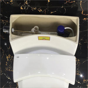 Ceramic Porcelain Sanitary Ware One Piece Water Closet Toilet pictures & photos