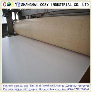 Chemical Resistant PVC Foam Board Rigid Board pictures & photos