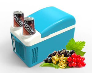 Portable Thermoelectric Cooler DC12V in Both Cooling and Warming Function pictures & photos