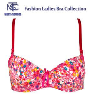 Girls Fashion New Hot Selling Bra