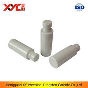 Dental Health Material Zirconia Ceramic Plunger pictures & photos