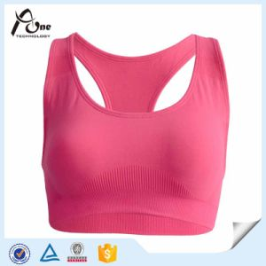 Factory Direct Sale Seamless Hot Sports Bra