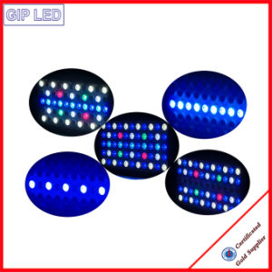 Coral Reef Used 120W 165W LED Aquarium Light for Distribution pictures & photos