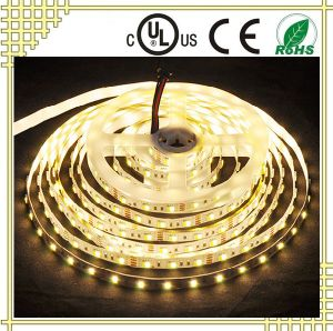 12V White and Warm White LED Strip Light pictures & photos