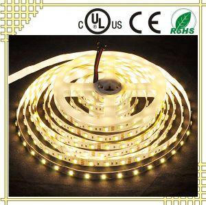 12V White and Warm White LED Strip Light