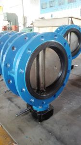 Double Eccentric Butterfly Valve with Gear Box