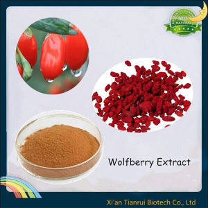 Wolfberry Extract, Goji Berry Extract, Lycium Extract pictures & photos