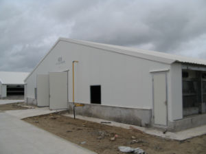 Steel Sheet Chicken House with Complete Automatic Equipments pictures & photos