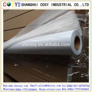 Waterproof & Weather Resistant Free Samples Printable PVC Self Adhesive Vinyl Rolls pictures & photos