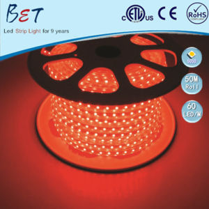 230V 110V LED Flexible Strip ETL Christmas Lighting Outdoor 50m/Roll pictures & photos