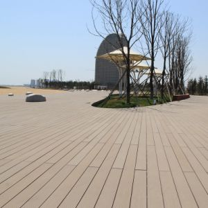 Solid WPC Outdoor Flooring (M24) pictures & photos