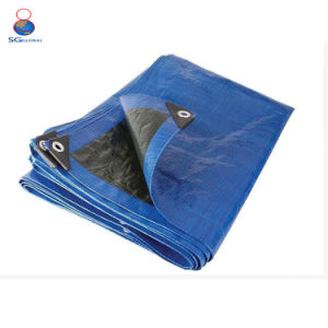 PE Tarpaulin by Sheet pictures & photos