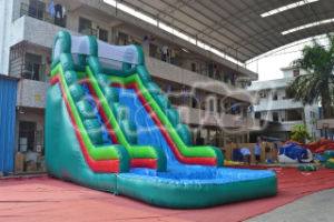 Large Inflatable Water Slide with Pool Chsl506 pictures & photos