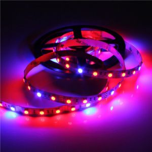 SMD 5050 Flexibel Strip for LED Grow Light pictures & photos